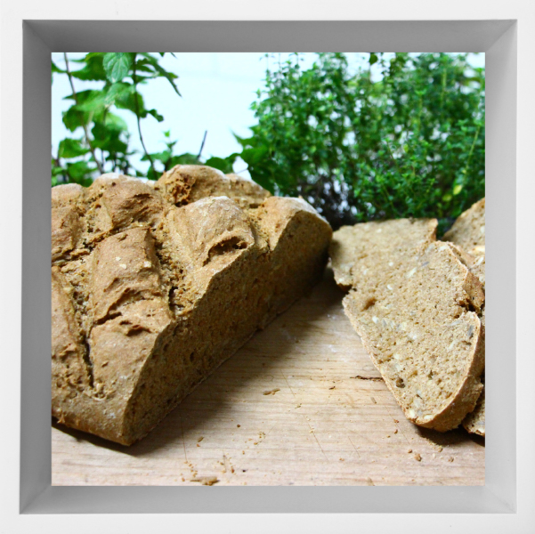 Glutenfrei Backen Brot